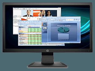 HP P204v 49.53 CM (19.5) Monitor