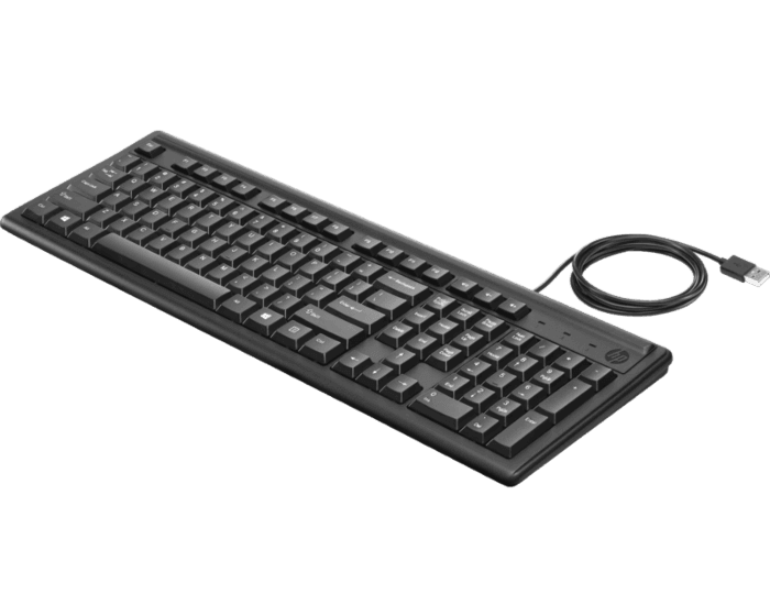 HP Keyboard 100