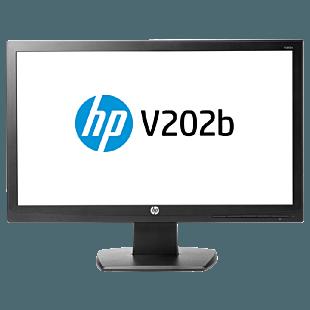 HP V202b 49.4 cm (19.45) Monitor